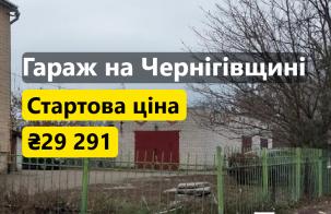 Гараж на Чернігівщині