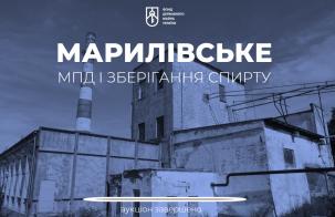 Марилівське МПД та зберігання спирту приватизовано за 120 000 000 грн