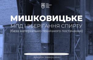 Приватизація окремого майна Мишковицького МПД: ціна зросла у понад 10 разів